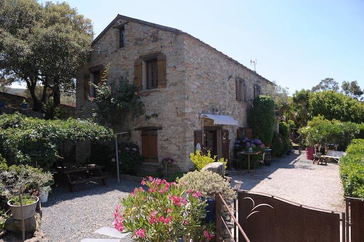 Santo-Pietro-di-Tenda的民宿