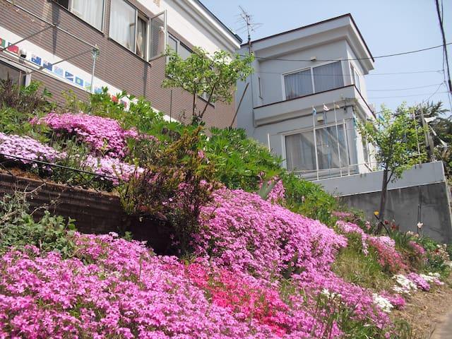 Sapporo, Toyohira-ku的民宿