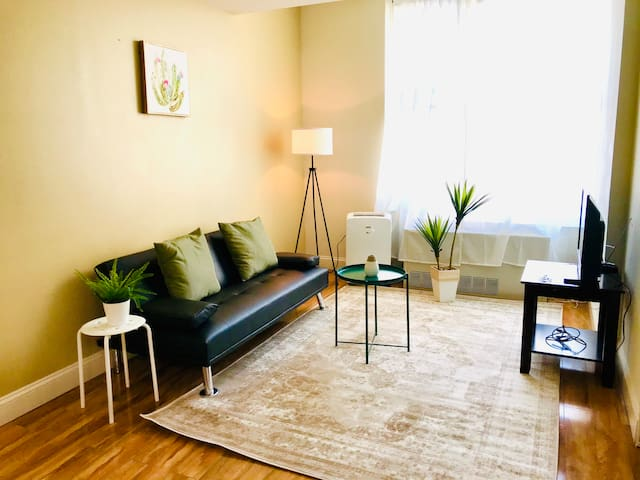 Spacious Apt Downtown - Short/Long Rentals Welcome