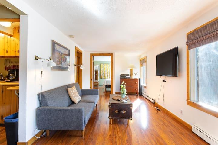 Modern Home in Heart of Evergreen