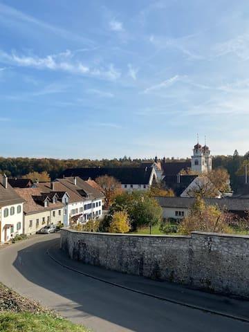 Rheinau的民宿