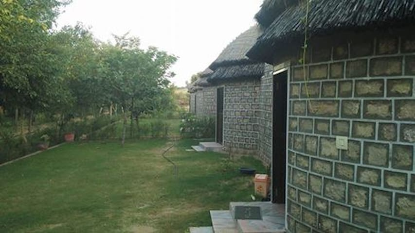 Abhay Resort and Camp