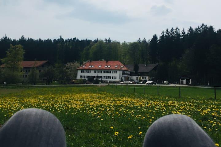 Treffelstein的民宿