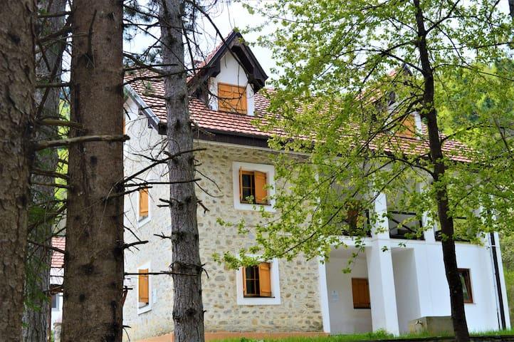 Trnica的民宿