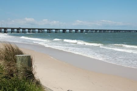 Virginia Beach 2 King BR apt 100 feet from beach
