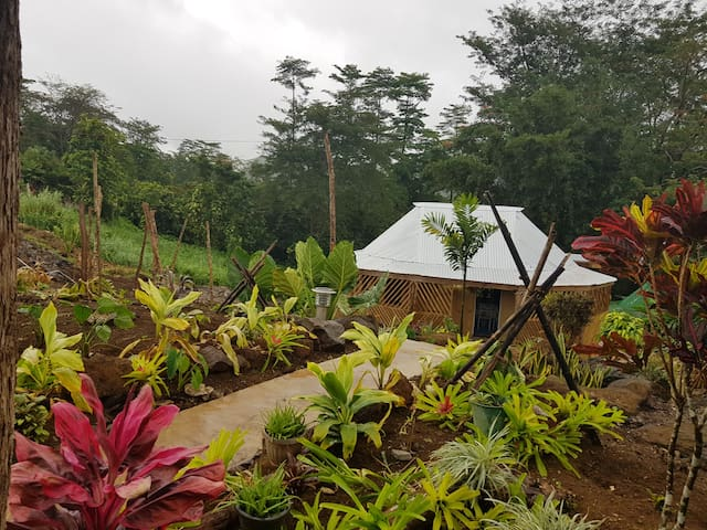 Tuamasaga Eco-Lodge in the cool and lush tropics.