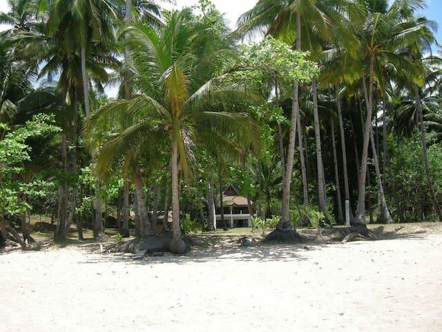 Puerto Princesa的民宿