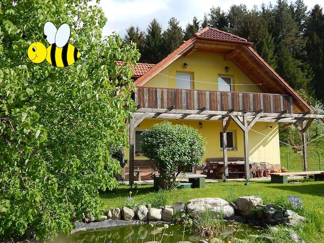 Gornji Grad的民宿