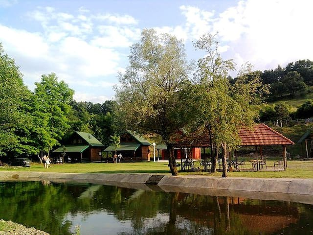 Lopatnica的民宿