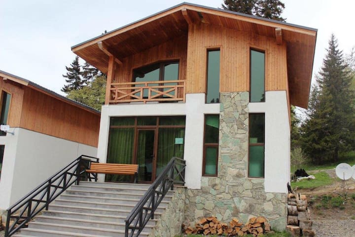 Nice cottage in Bakuriani