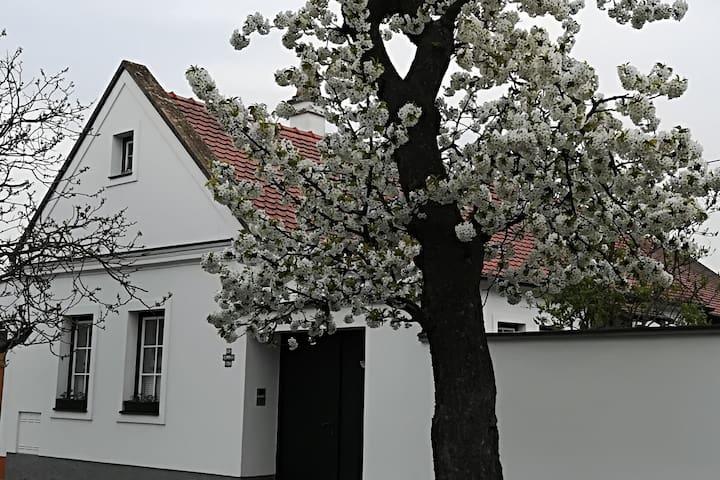 Parndorf的民宿