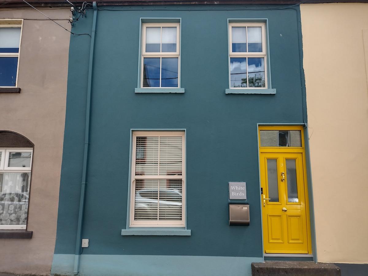 "*New* ""White Birds"" Townhouse in Sligo Town Center"