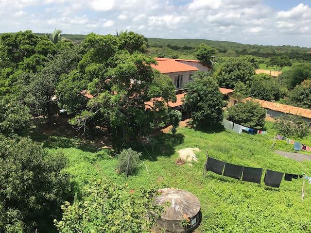 Fazenda exótica no Piauí