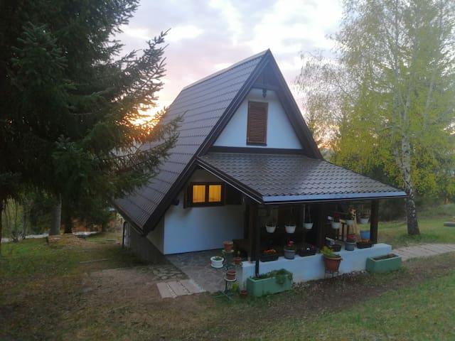 Ravna Gora的民宿