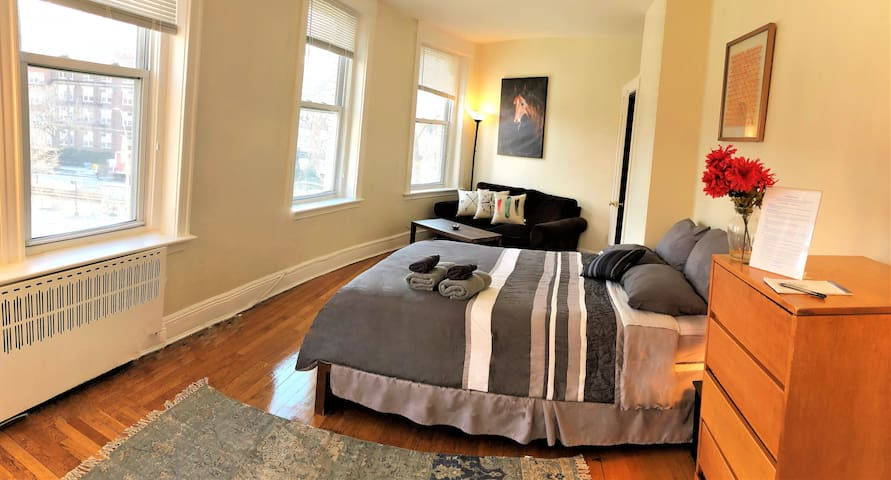 Bright Spacious Private Bedroom in Coolidge Corner