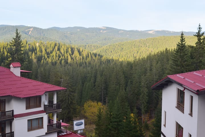 Spacious 1 bed Apartment in Pamporovo