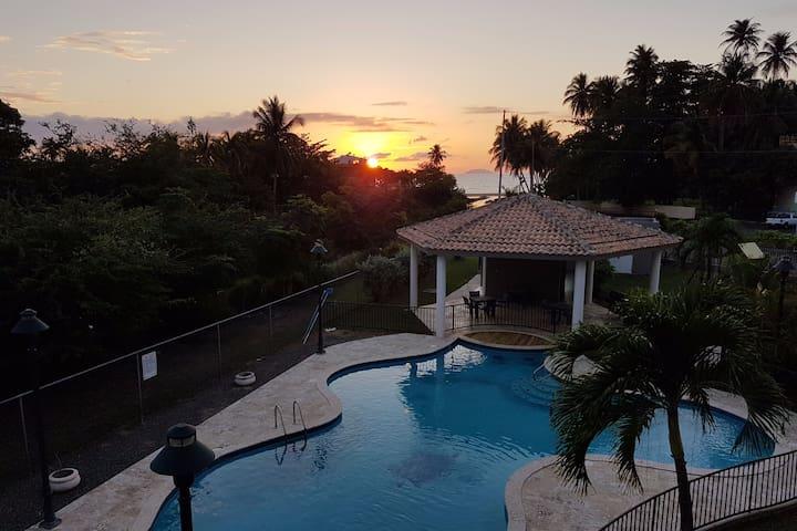 Paradise in Rincon