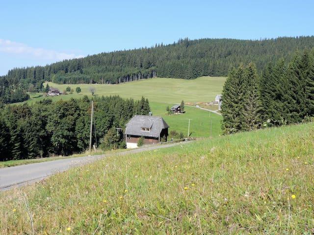 Titisee-Neustadt的民宿