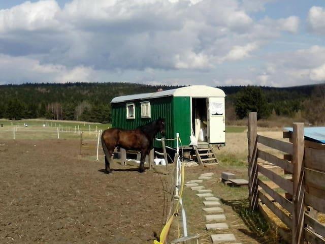 Krasová的民宿