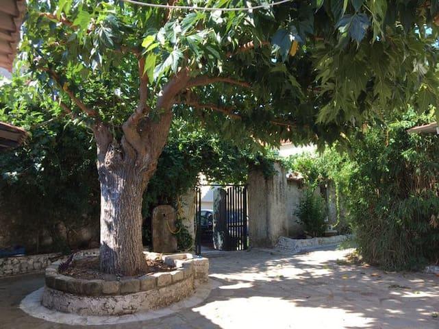 Kremmidia的民宿
