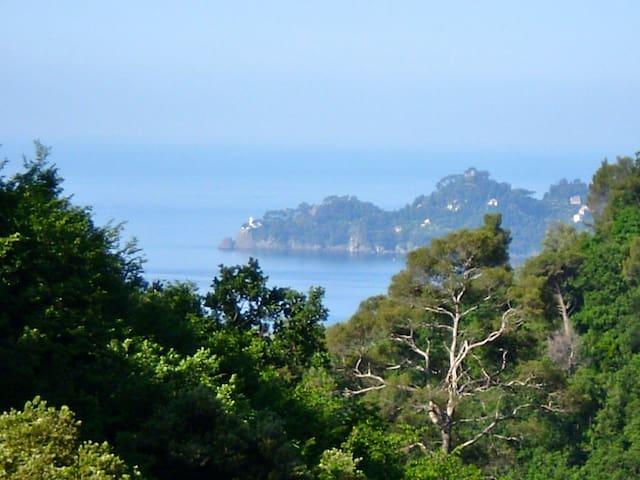 Casa Mandarino a Zoagli monolocale nella natura