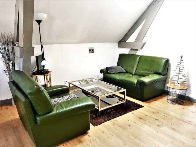 Tourist apartment . Quiet in the center of Semur
