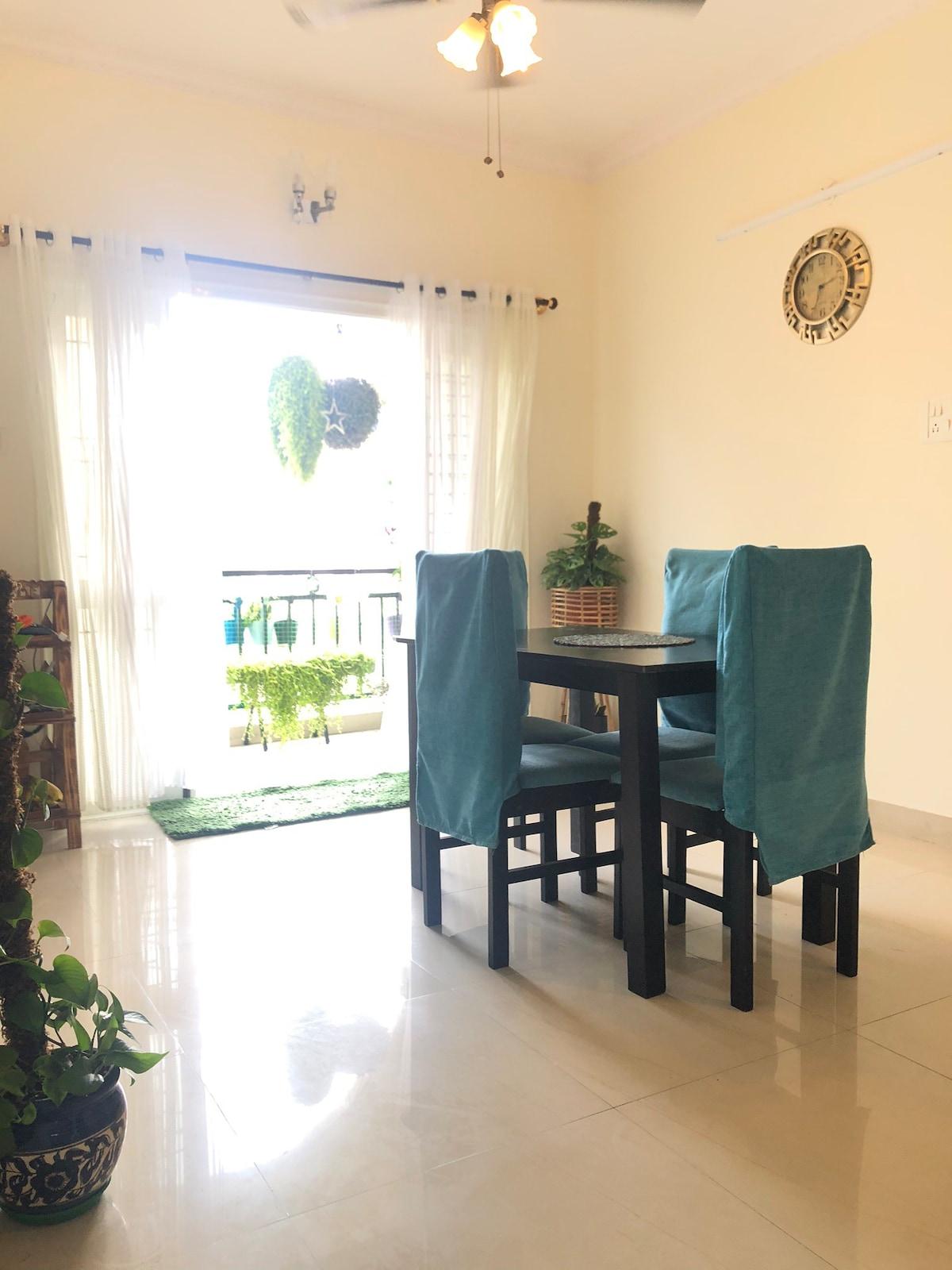 Gaurav's plant filled,cozy, safe and sanitised den