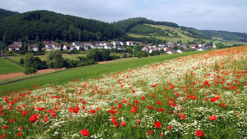 Flußbach的民宿