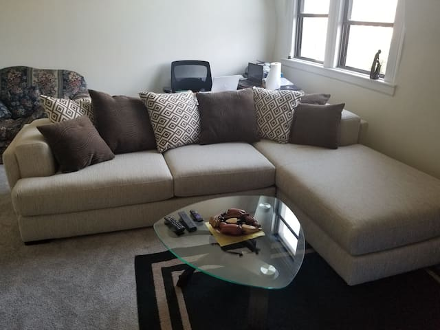 Large room in a cozy large two bedrooms apartment