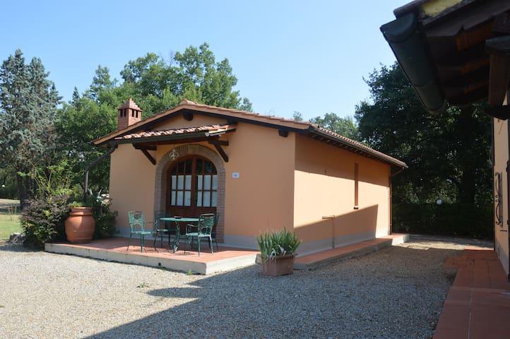 泰拉诺瓦布拉乔利尼 (Terranuova Bracciolini)的民宿