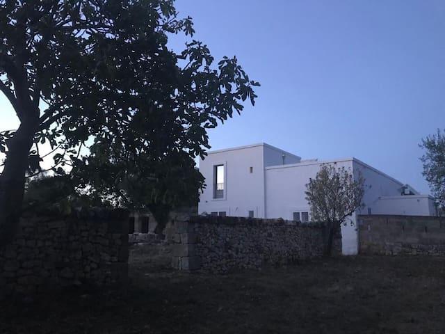 Historic villa set amongst ancient olives