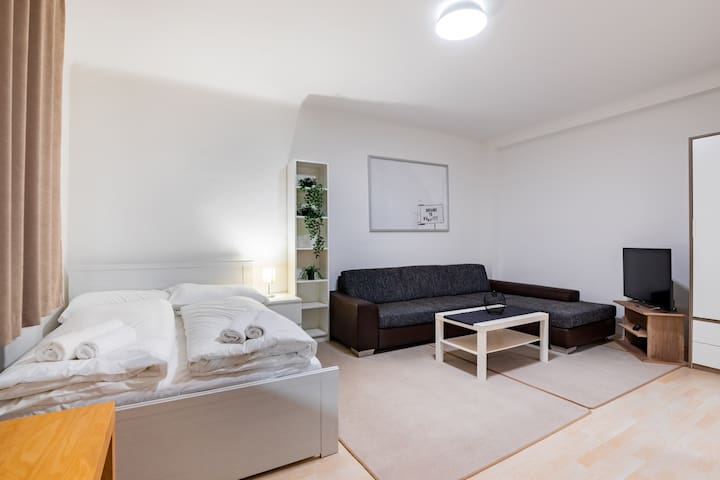 Comfortable studio in the heart of Vienna