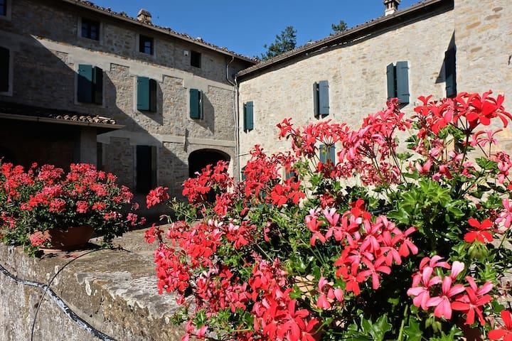 Campora di Neviano Degli Arduini的民宿