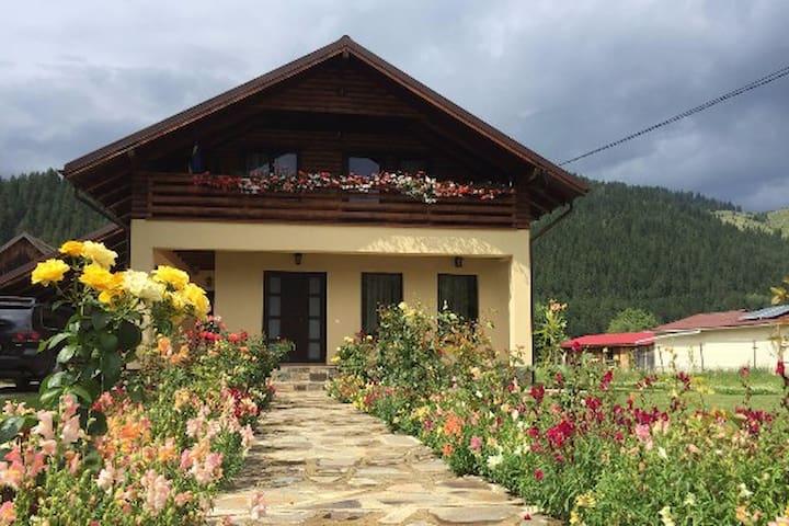 Bistricioara的民宿