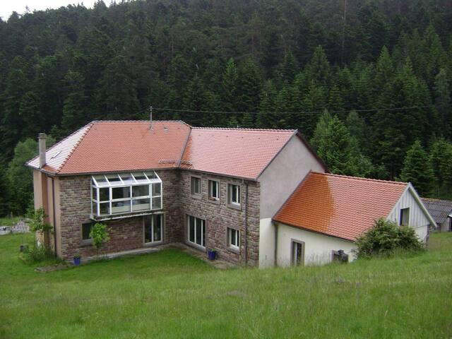 Wangenbourg-Engenthal的民宿
