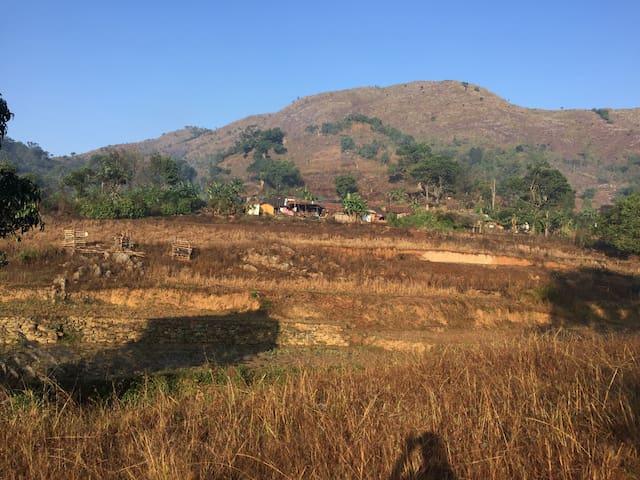 Ananthagiri的民宿