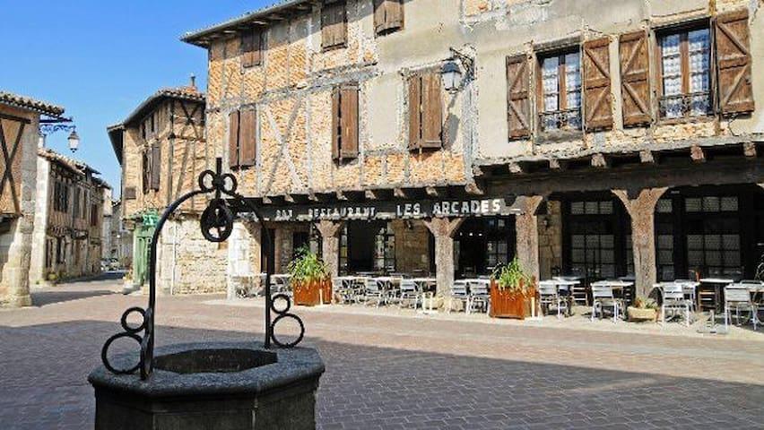 卡斯泰尔诺德蒙特米拉 (Castelnau-de-Montmiral)的民宿