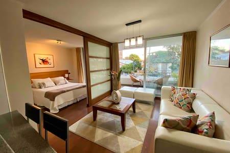 Full Apartment 1D/1B - Bellavista, Providencia
