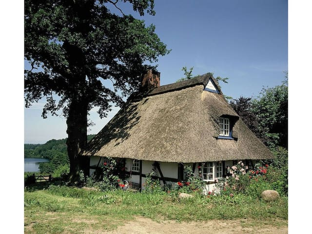 Schellhorn的民宿