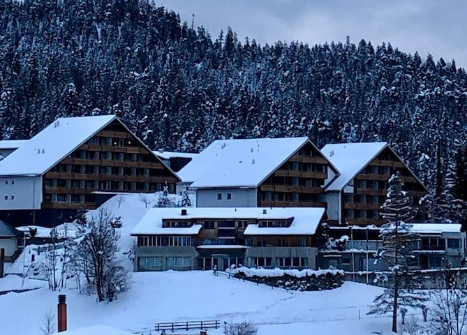 Studio with mountain view and nearby ski lifts