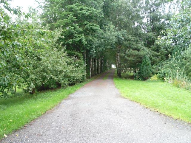 Steinau的民宿