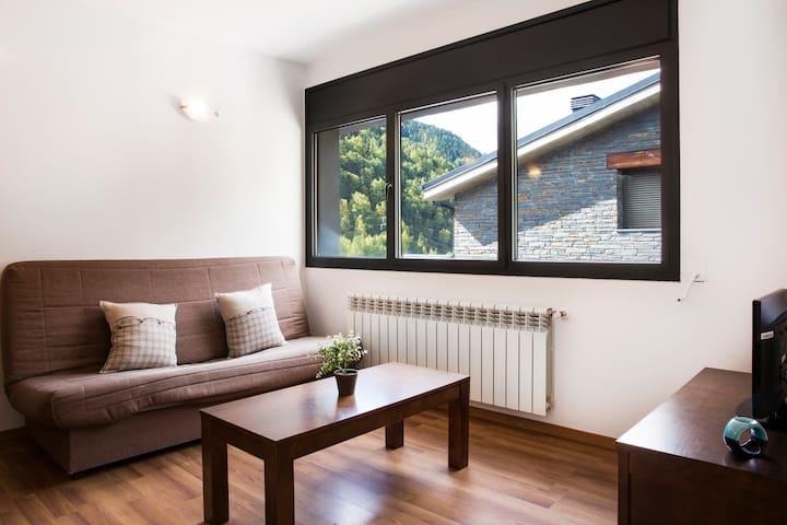 One-Bedroom apartment. VTA1BD