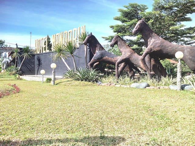 Central Lampung Regency的民宿