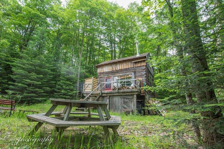 Raðljóst:  An 1850's Log Cabin in the Woods