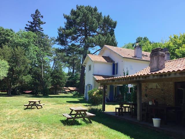 Léon的民宿