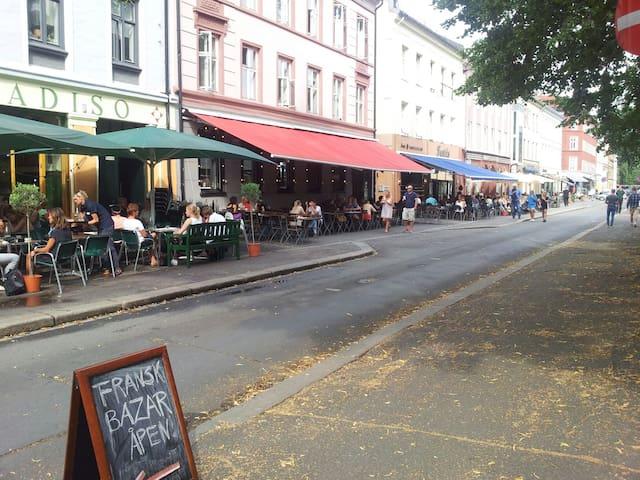 奥斯陆的民宿