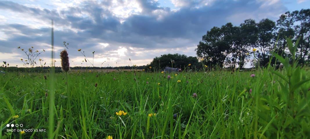 Radostów Dolny的民宿
