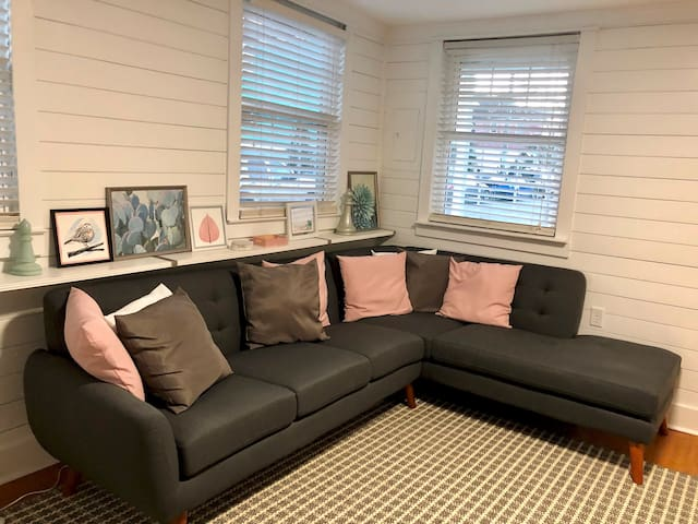 Private Bedroom in 3 Bedroom Home Downtown