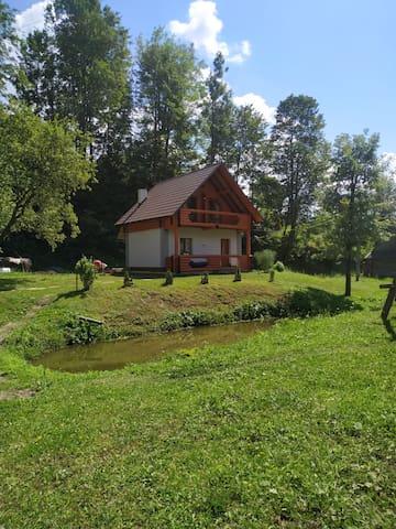 Verkhnii Studenyi的民宿