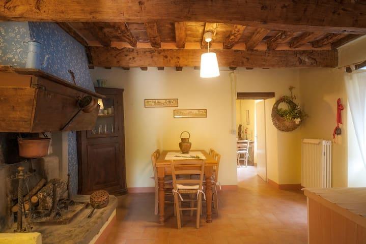 Palazzo Mucci的民宿